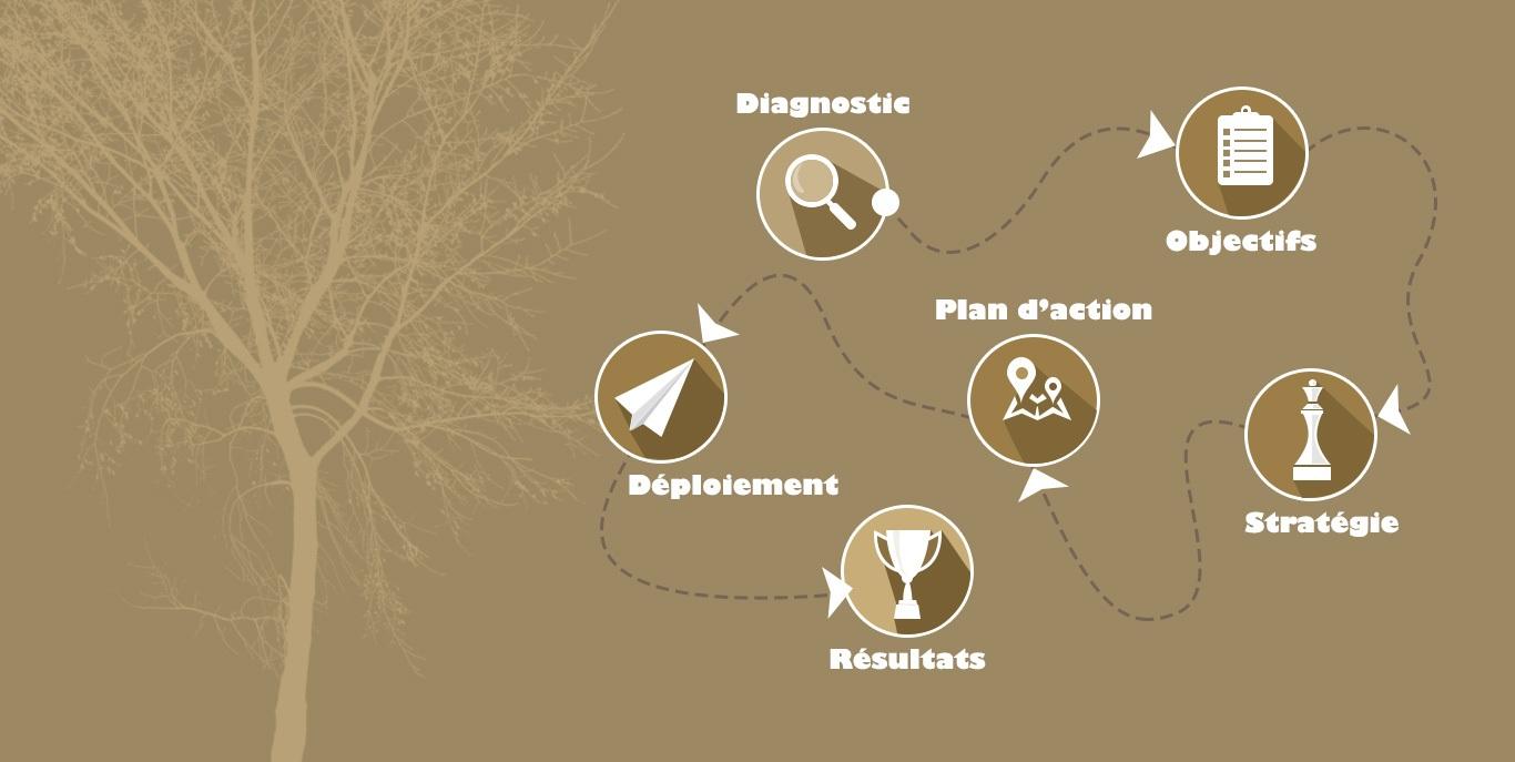 Workfow Strategie Web de NaNo Digital & Design : diagnostic, objectifs, stratégie, plan d'actions, déploiements, résultats